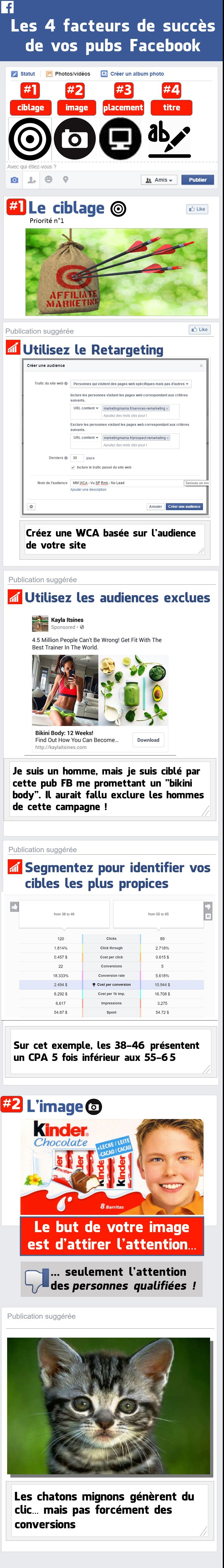 Infographie Pubs Facebook