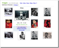 Cliquez sur « montrer des images similaires » pour poursuivre la recherche