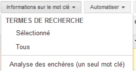 Informations mots-clés Google Adwords
