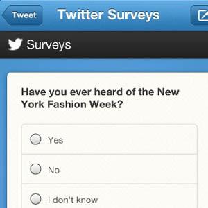 Formulaire de sondage Twitter Surveys