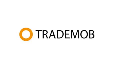 Marketing mobile pour les fêtes : Quelles sont les bonnes pratiques chez Trademob ?