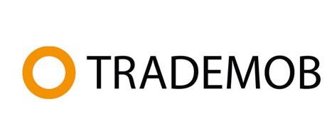 Offre emploi : Senior Sales Manager Trademob (Paris)