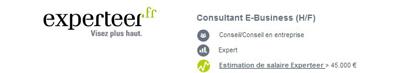 offre emploi consultant ebusiness