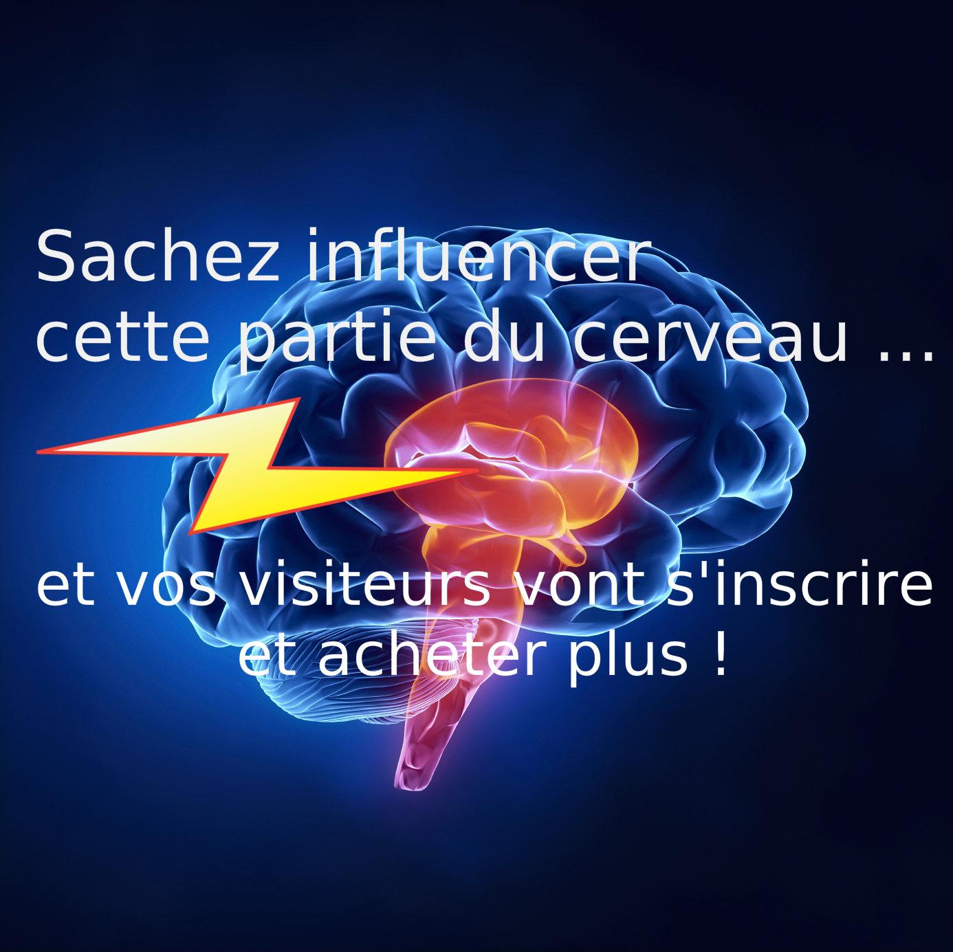 cerveau_reptilien_taux_de_conversions3