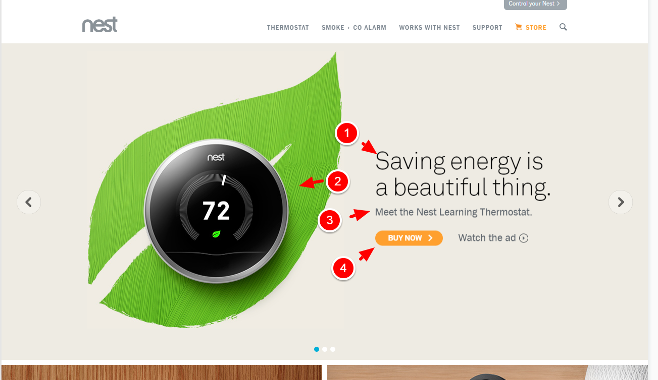 nest_screenshot