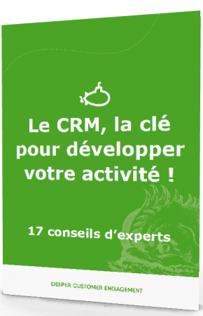 3d-crm-cle-dev-business