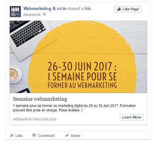 Aperçu Campagne Facebook sur Mailchimp