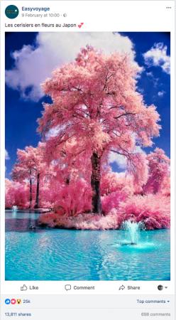 Easyvoyage-cherry-blossom
