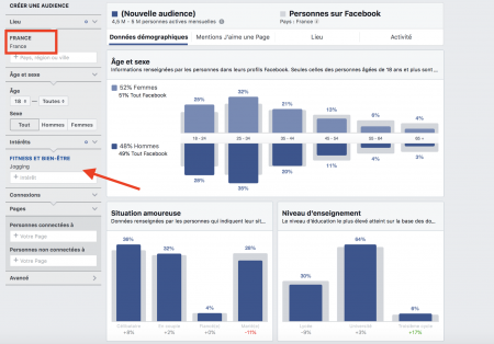 Intérêts Facebook audience insight