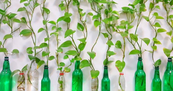 Content Marketing : 6 idées et 5 étapes pour recycler ses blog posts